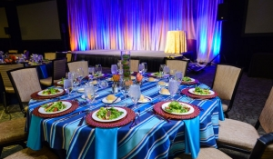 Blue Spark - Striped linen overlay, navy, turquiose, orange chargers, pipe and drape with lighting, Phoenician