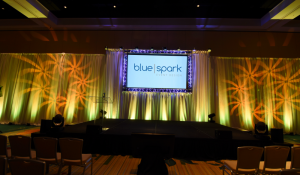 Center Stage Design for LimeLight by Alcone August 2016 conference, Blue Spark logo