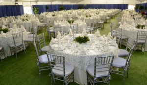 blue-spark-event-design-awards-luncheon-at-gaylord-palms